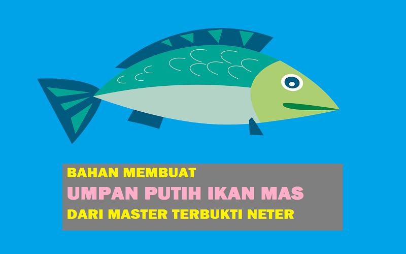 Umpan Putih Ikan Mas