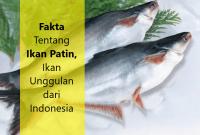 Fakta Tentang Ikan Patin